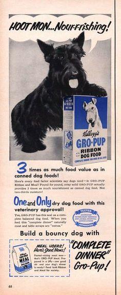 1951 Scottie Dog in Kellogg's GroPup dog food print ad by Vividiom
