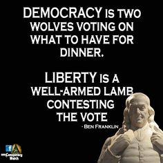 """"""" we are not a Democracy. Two Wolves, Benjamin Franklin, Founding Fathers, Oppression, Favorite Quotes, Quotations, Politics, Shit Happens, Memes"""