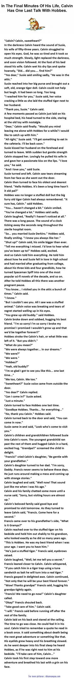 In the final minutes of his life,Calvin has one last talk with Hobbes...IN TEARS