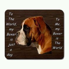 Only a parent of a Boxer dog knows this feeling....i lub you D-Jay!!