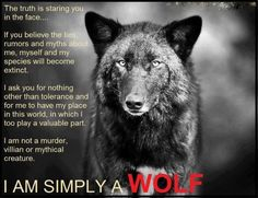 from Let the wolves run free