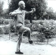 Yi Quan - a powerful art consisting entirely of standing practice.