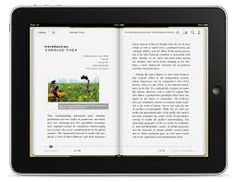 If schools provide each student with Ipads then they can access novels via the ebooks app, which allows them to read as well as add their own notes.