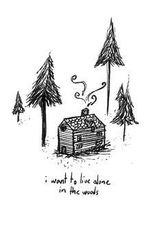 i want to live alone in the woods :)