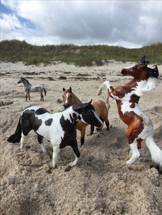 breyer horses at the the beach !
