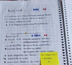 Bullet Journal em português Bujo - agenda diária