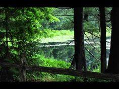 "Sandi Kimmel - ""Love Mother Earth"" - YouTube A love song..."