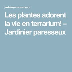 Les plantes adorent la vie en terrarium! – Jardinier paresseux