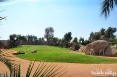 Visita al Bioparc de Valencia - Viajando Contigo