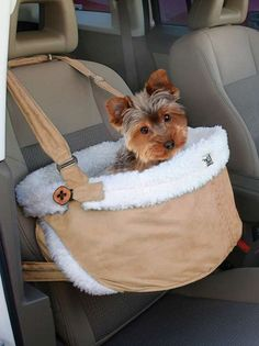 The Atlantic Heights Pet Booster Seat provides smaller dogs with a secure and elevated place to rest while riding in the car with you.