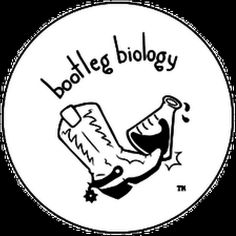 Bootleg Biology helps advance local beer scene.