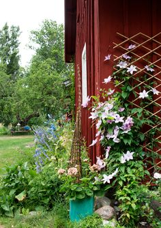 amazing Swedish Bohemian Garden There are Swedish moods that we like more than others and this garden by Daphne & Rolf is a perfect example of a pretty bohemian atmosphere. We lo. Love Garden, Diy Garden, Dream Garden, Garden Sheds, Garden Pots, Red Cottage, Garden Cottage, Summer Diy, Summer Garden