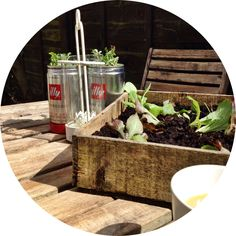 Upcycling coffee tins to create mini herb garden. Quick and easy little gardening project. Great idea for small outdoor spaces or window ledges. Would look great on balconies.