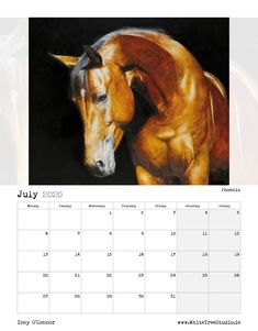 Tony O Connor 2020 Equine Art Calendar Limited Edition Art Calendar, Equine Art, Life Is Good, Moose Art, Sketches, Artist, Animals, Image, Store