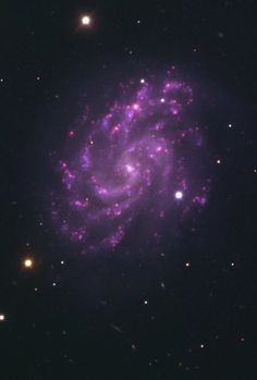 The spiral galaxy NGC 5584 and SN - Astronomy Planets And Moons, Galaxy Planets, Virgo, Cosmos, Spiral Galaxy, Space Photos, Purple Roses, Pink Purple, Astronomy