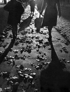 dewalk in autumn Paris Willy Ronis kThis post has 89 notes tThis was posted il y a 2 semaines zThis has been tagged with willy ron. History Of Photography, Dark Photography, Monochrome Photography, Vintage Photography, Black And White Photography, Street Photography, Willy Ronis, Robert Doisneau, Grand Prix