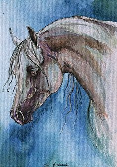 Grey arabian horse watercolor painting by AngelHorses on Etsy, £45.00