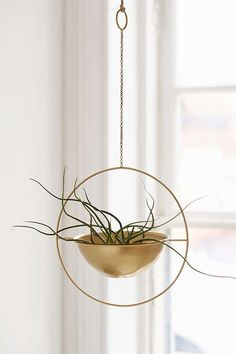 Slide View: 1: Assembly Home Eos Hanging Planter