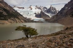 Laguna Torre am Cerro Torre Mount Everest, Mountains, Nature, Travel, Towers, Patagonia, Argentina, National Forest, Explore