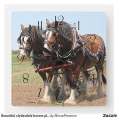 Beautiful clydesdale horses ploughing square wall clock Barrel Racing Saddles, Barrel Racing Horses, Clydesdale Horses, Breyer Horses, Horse Halters, Horse Saddles, Show Horses, Race Horses, Western Pleasure Horses