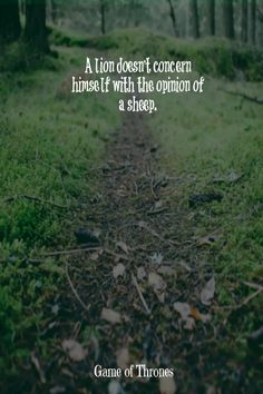 Happiness is never stopping to think if you are. Post Quotes, Quotes To Live By, Me Quotes, Funny Quotes, Qoutes, Quotations, Humor Quotes, Wisdom Quotes, Yeats Quotes
