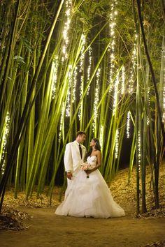 weddings wedding venue retreat love in the bamboo gardens golden door spa in san diego san marcos