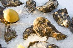 Der frischeste & beste Fisch in Wien: Fisch Gruber am Naschmarkt