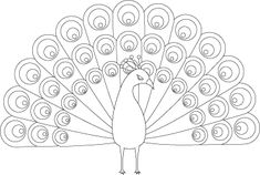 Pretty Peacock Coloring Page