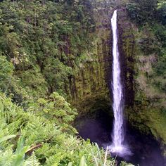 Akaka Falls, Big Island, Hawaii Can't wait to go back! Places To Travel, Places To Visit, Big Island Hawaii, Running Away, Hawaii Travel, Dream Vacations, State Parks, Places Ive Been, To Go