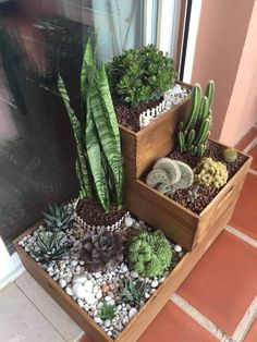 Composición cactus y suculentas - My site 40 magical side yard and backyard gravel garden design ideas 43 Related 60 Suprising Indoor Garden Apartment Design Ideas For Summer Do you have a dream garden in mind but can't seem to find the space to make t House Plants Decor, Patio Plants, Indoor Plants, Indoor Cactus, Succulent Gardening, Cacti And Succulents, Planting Succulents, Garden Cactus, Balcony Garden