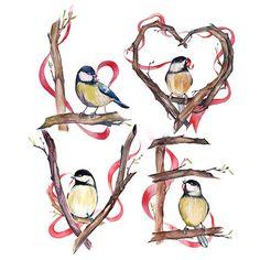 Elizaveta Shvedova : Birds in the nature!