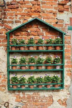 Here's a fun way to display a lot of small pots!