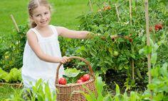 Ein Naschgarten für Kinder ist eine tolle Sache. Wir zeigen, wie man ein Gemüsebeet kinderfreundlich anlegt.