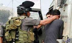 """قوات الاحتلال تعتقل فلسطينيًا في مدينة """"تل…"""