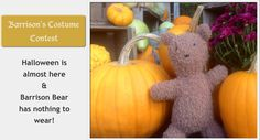 Barrison's Costume Contest: Design a Halloween costume for Barrison & win yarn!  (details on the blog)