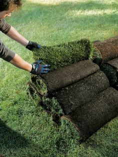 Laying sod is the quickest and most satisfying way to create an instant lawn.