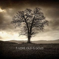 T.LOVE - OLD IS GOLD