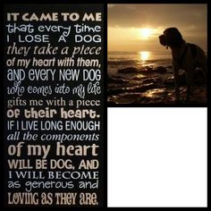 Pet Memorial Poem Reminds me of my gorgeous dog Jess! I miss her!