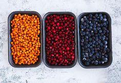 Vychutnejte si divoké plody přírody / Použití bylinek / Rady, recepty & bylinkové tipy / SONNENTOR.cz - SONNENTOR - Tady roste radost - biočaje a biokoření