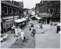 Net, Holland, Street View, The Hague, The Nederlands, The Netherlands, Netherlands