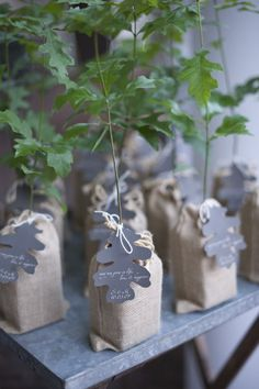 One of the most wasted elements of a wedding are favors.  Use something that gives back to the environment like saplings.