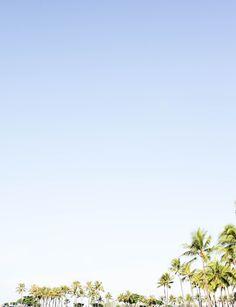 Waikiki | justine elizabeth: Oahu, Hawaii