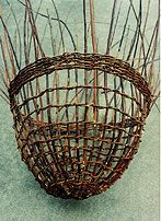 Coppicing to make willow baskets. Coppicing can be done in small yards too, all you need is 1-4 trees that are coppiced (which doesn't take up much space) and you can start producing your own withes to make wattle fences or baskets.