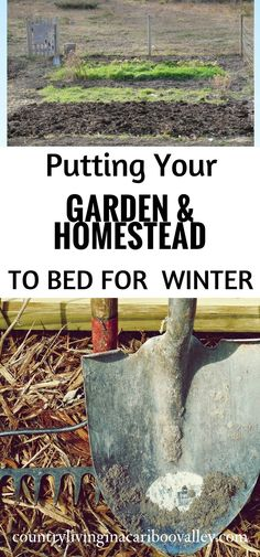 Do these things now to have a more productive garden & homestead next Spring!