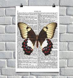 butterfly em estilo europeu :)