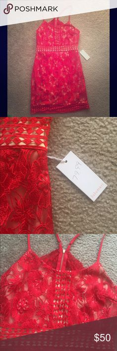 Red and Cream Racerback Sexy Little Mini Dress Tagged for exposure! Bought online and doesn't fit. Size M. Non smoking home. Perfect condition. Looks a lot like for love and lemons ❤️🍋😌 red with cream underneath. For Love and Lemons Dresses Mini