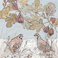 TW74 - Partridges and Figs