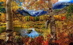 gerçek sonbahar manzarası