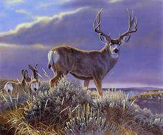 mule deer painting by Al Agnew