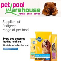 Proud to be a stockist of Pedigree pet food. Visit us at Pet Pool Warehouse Knysna and stock up on your favourite pet brands #pets #petnutrition #pedigree